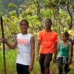 Rainforest Hiking Tour