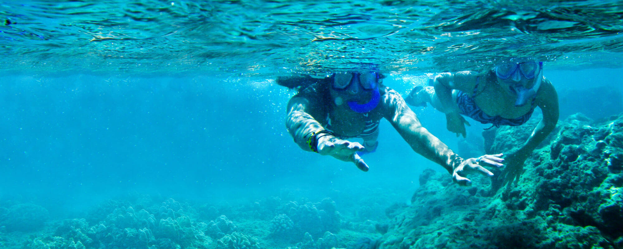 Oahu Snorkel Tour