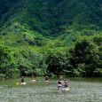 Kahana River Stand up Paddle Boarding