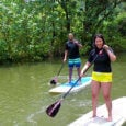 Rainforest paddleboarding