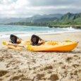 Oahu malibu kayaks pro 2 tandem ocean Kayak Rentals