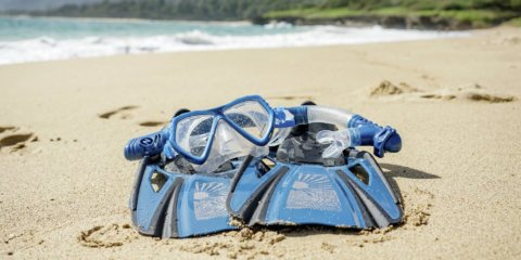 Oahu Snorkel Mask and Fin Rentals